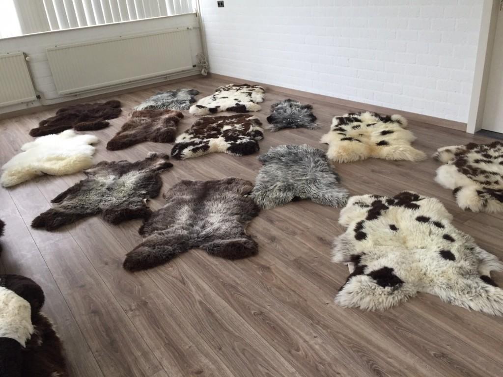 Lamshuiden, lamsvellen, schapenhuiden, schapenvachten, bruine, bonte, witte, grijze, zwarte, gevlekte huiden